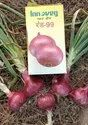 Red-99 Onion Seeds