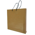 Eco Friendly Plain Paper Bag