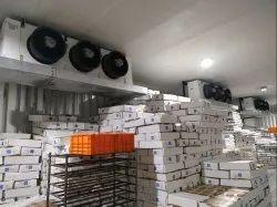 Sea Food Cold Storage