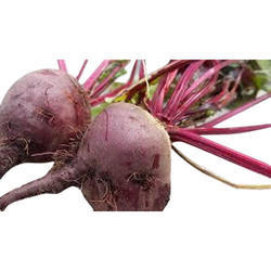 Fresh Beetroot, Packaging: 50 kg