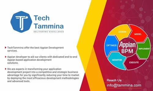appian bpm implementation and development service
