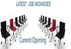 Latest Jobs Placement Service
