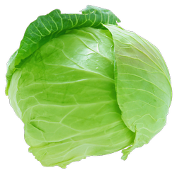 A Grade Green Fresh Cabbage, 50, Pesticide Free (for Raw Products)