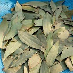 Tej Patta Bay Leaf