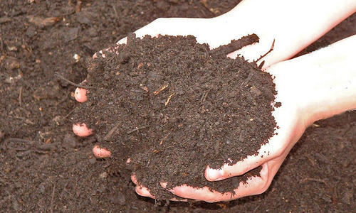 Bio Culture 70 % Bio Growth For Aeration MLSS Growth In STP Plant