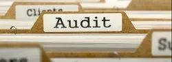 Financial Audits Service