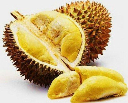 Image result for durian