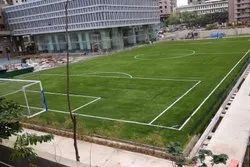 Football Turf Grass