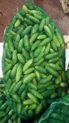 A Grade Green Tindori (Ivy Gourd)