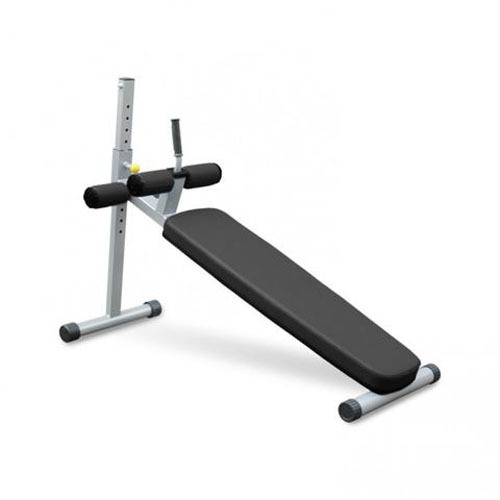 Professional Gym Machines - Back Extension Manufacturer from
