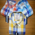 Multicolor Checks Mens Fancy Cotton Check Shirt