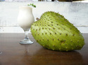 Graviola Soursop Fruit