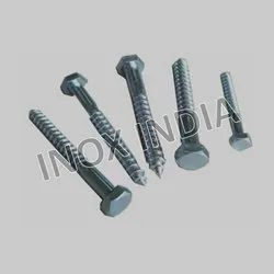 Ss 316 Coach Screws
