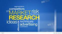 Online And Offline Market Research Outsourcing, in Pan India