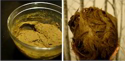 Good Quality Henna Powder for Hair