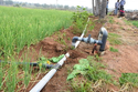 500 Sqm Spray Irrigation Kit