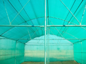 Hdpe Garden Crop Protection Net, Packaging Type: Roll