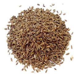 Dill Seed Aowa