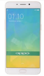 Oppo F1 Plus Gold