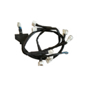 Cng Wiring Harness