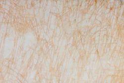 Golden Spider Marble