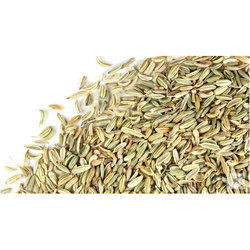 Delicious Green Fennel Seeds Table Special, Packaging Size: Bulk, Pack Size: 1-5 Kg