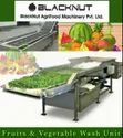 Continuous Type All Veg. & Fruit Washing, Drying & Disinfection Line