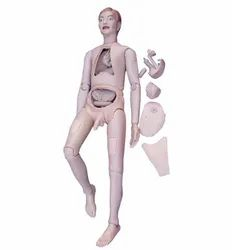 High Quality Nurse Training Doll ( Male) Unisex Anatomy Model