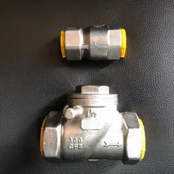 SS Non Return Valves