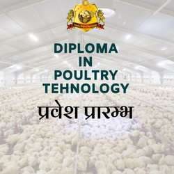 1 Year Full Time Diploma In Poultry Technology