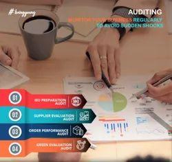 1 Day Audit Management Services