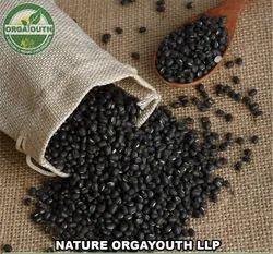 Organic Urad Whole / Black Gram Whole, Pan India, Packaging Size: 50 Kg