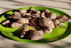 Rare Endangered Black Turmeric/ Kali Haldi For Health, Wealth And Prosperity.