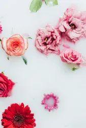 Sensual Flora Fragrances
