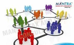 MLWF Consultant