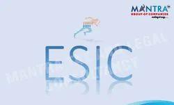 PF ESIC Registration Services