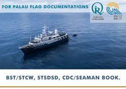 Palau CDC Book