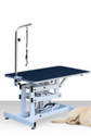 Dog & Cat Grooming Hydraulic Stand Platform