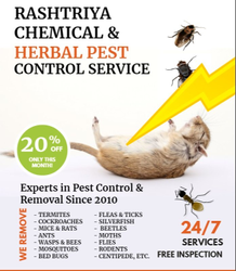 Home Spray Herbal Pest Control Services