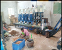 Automatic Cashew Nut Shelling Machine Line