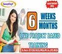Summer Training Institute In Bareilly