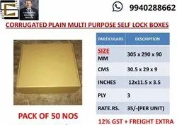 Self Lock Carton Box Unprinted