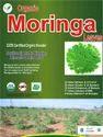 Drumstick / Moringa Leaves (Dried)