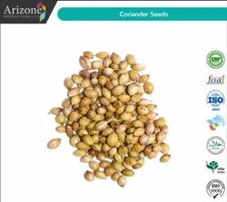 Arizone Dried Coriander Seeds, For Spices, Packaging Type: PP Liner Bag