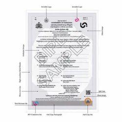 20087 Death Certificate Paper