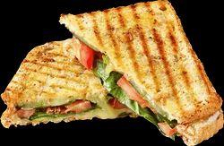 Veg Cheese Sandwich