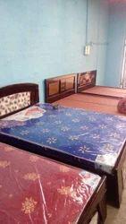 Designer Single Bed