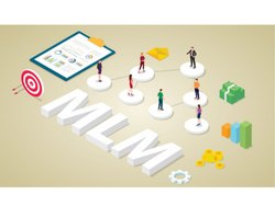 Online MLM Application Development Service, In Pan India