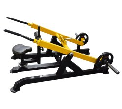 Dips Dual Or Triceps Press Down Plate Loaded