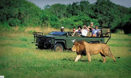 Self Drive South Africa Tour Packages in Chandni Chowk Area